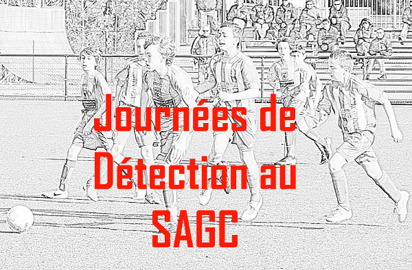 journee detection 600